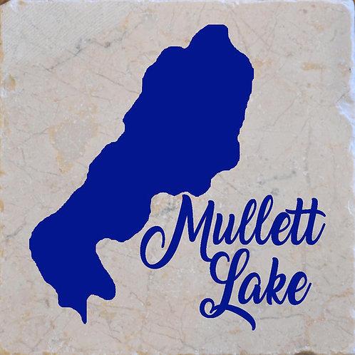 Mullett Lake Coaster