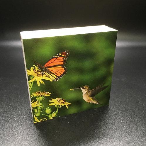 Butterfly & Hummingbird Photo Art Block