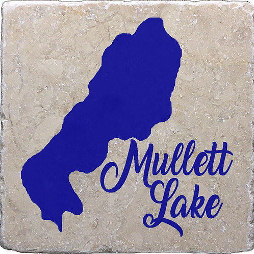 Mullett Lake Coaster