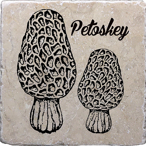 Petoskey Morel Coaster