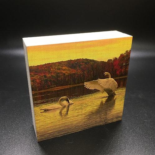 Swan Pair in the Fall Art Block