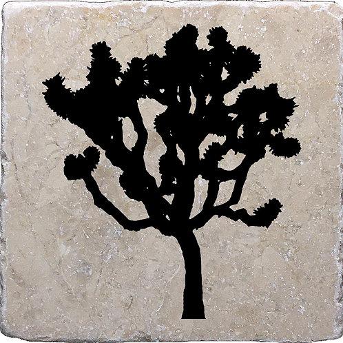 Joshua Tree Monochrome Coaster