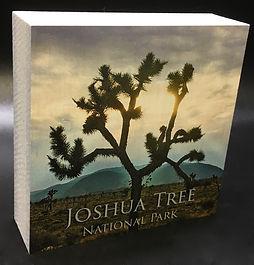 WOOD BLOCK JOSHUA TREE NATIONAL.jpeg
