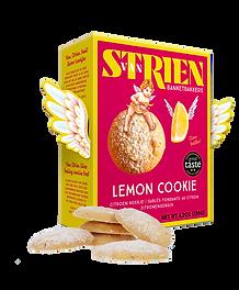 ep2911_ep2911-5_van strien_lemon cookies
