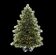 Christmas%20Tree%20with%20Lights%20_edit