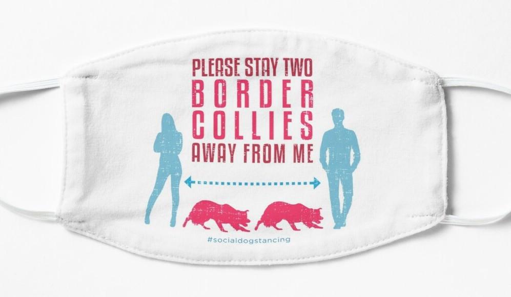 funny border collie dog social distancing face mask