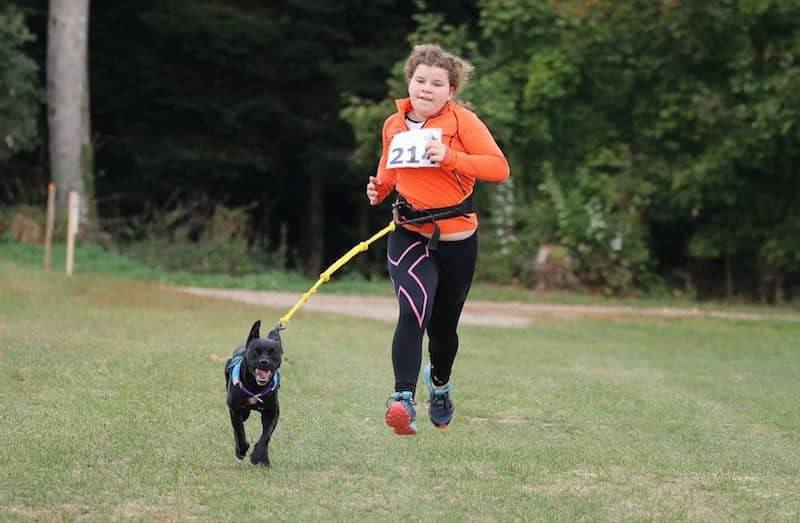 canicross running with my dog active dog sports