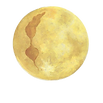 MMD logo trans.png