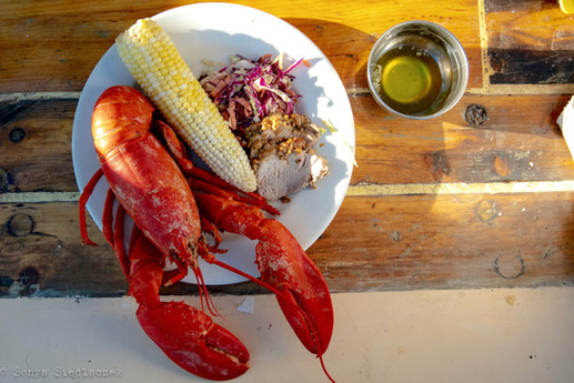 Lobster Dinner sail maine.jpg