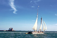 Sailing Maine_harbor schooner.jpg