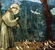 C'era una volta…La chiesa di San Francesco a Castellammare