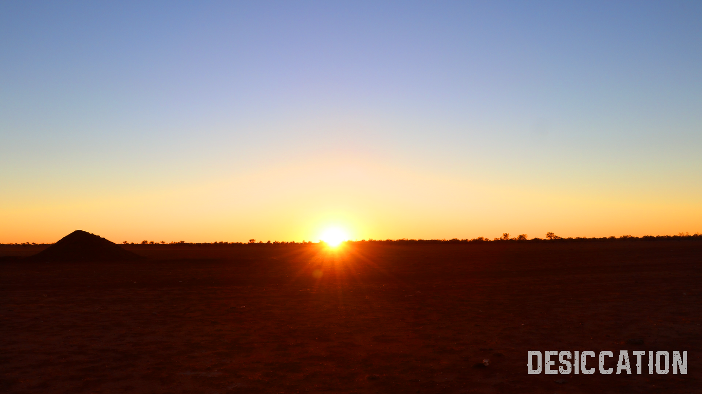 DAY 2: Sunrise