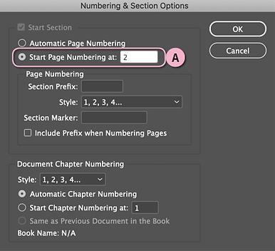 Numbering & Section Options.png