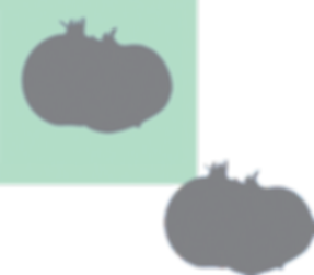 After Duplicate Shape.png