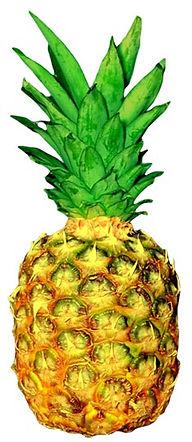 NonePixelated Pineapple.jpg