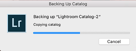 Backing up Catalog.png