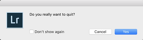 Do you really want to Quit.png