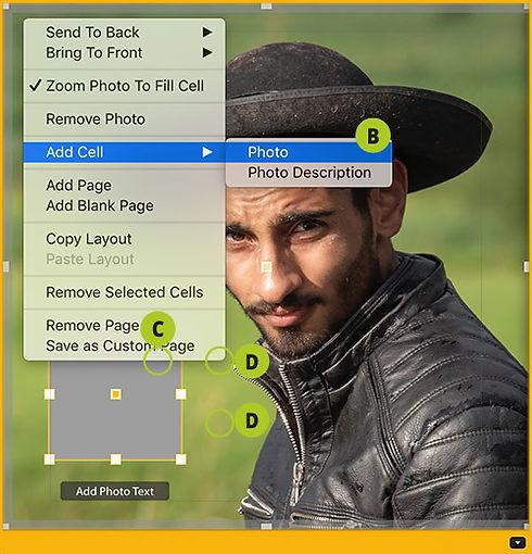 Add Cell (PM).jpg