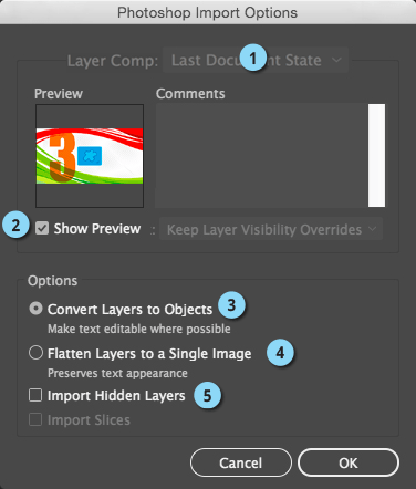 Photoshop Import Options1.png