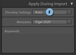 Apply-Auto-During Import.png