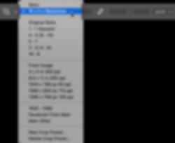 Crop Tool Options-ratio.png