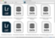 Lightroom Catalog Folder.png
