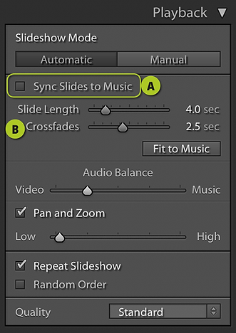 Playback Options-1.png