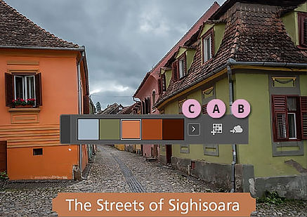 Sampling Color Theme-S.jpg