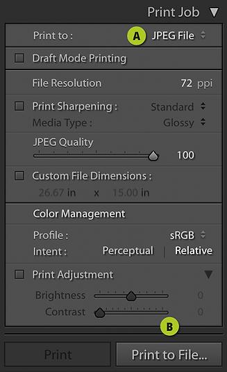 Print Job.png