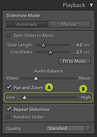 Playback Options-2.png