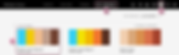 Adobe Color-1.png