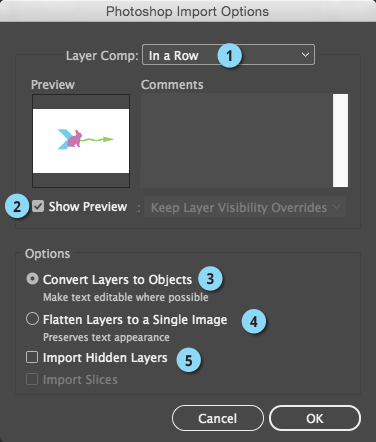 Photoshop Import Options.png