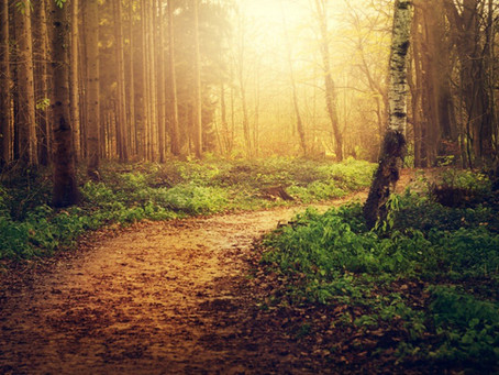 Notre nature divine