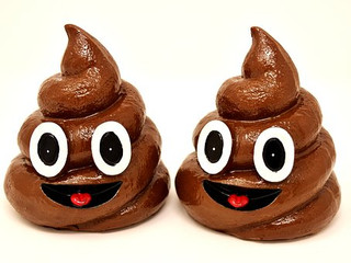 Are You Happy With Your Poop?