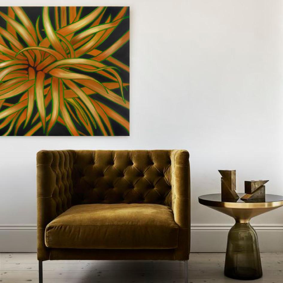 'Tricolour Flax'