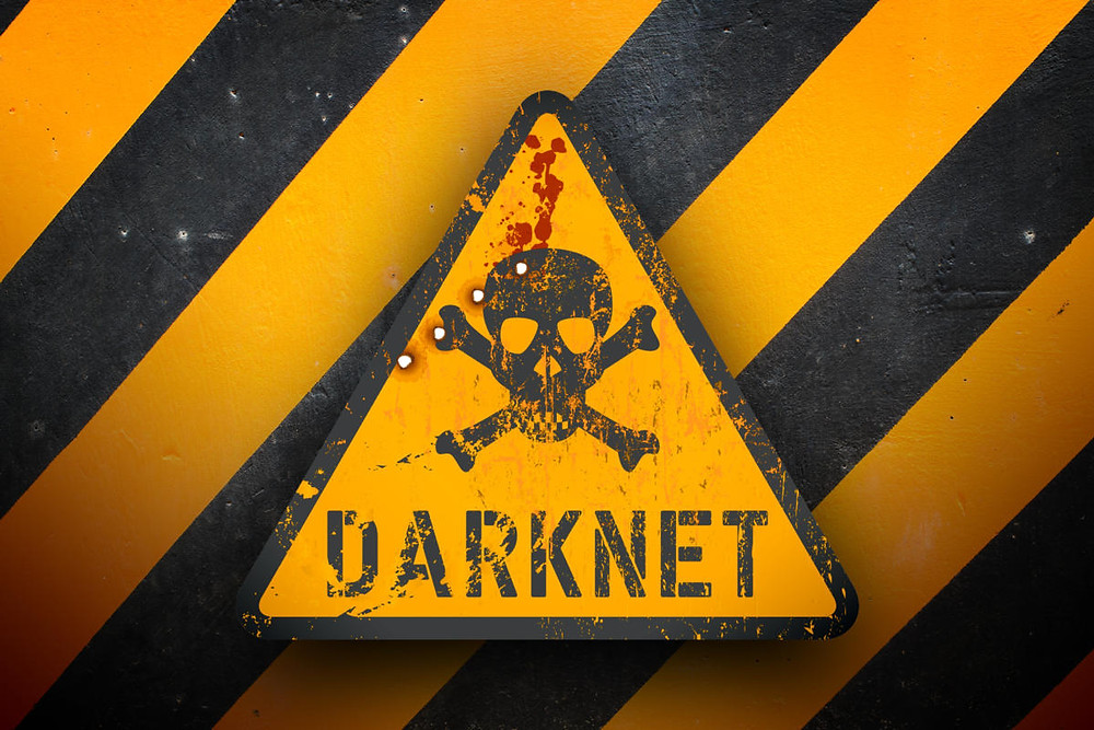 Stay off the Dark Web, we can search for you instead.