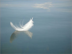 floating-feather.jpg