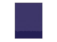 portal-trans-logo.png