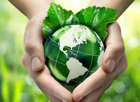 La cuestión ambiental en Argentina ¿hacia una política de Estado?