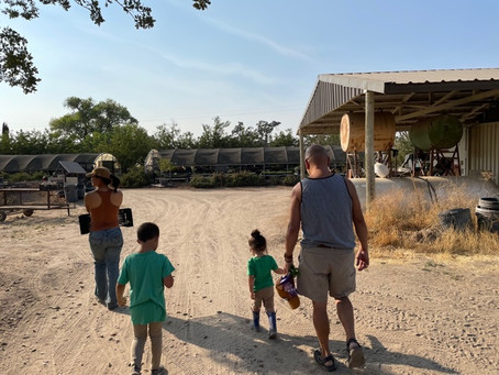Family Day at Windrose Farm/Finca Los Agaves