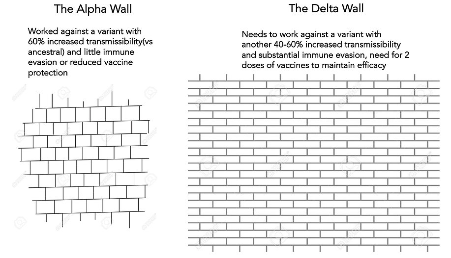Delta_wall_required_210620.jpg
