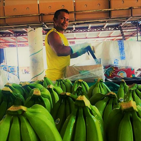 bagatocorp banana farm.png