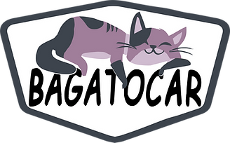 Bagatocar logo.png