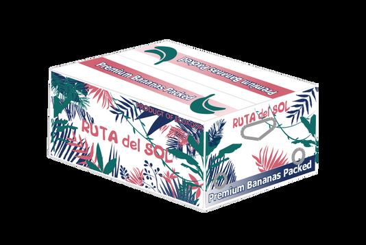 Ruta del Sol box.png