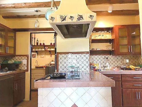 kitchen_coyo.jpg