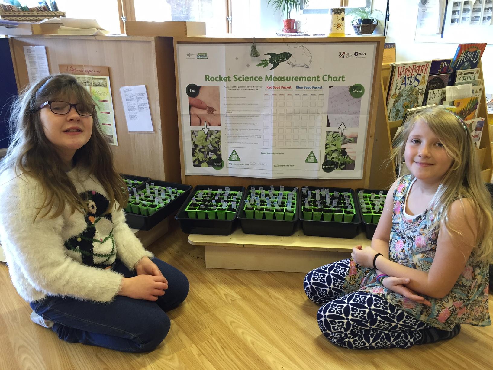 Edinburgh Montessori Arts School Grow Seeds From E Guide