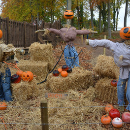 Weekend of Halloween Fun at Dalkeith Country Park