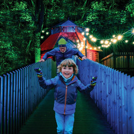 Spectacle of Light at Dalkeith Country Park