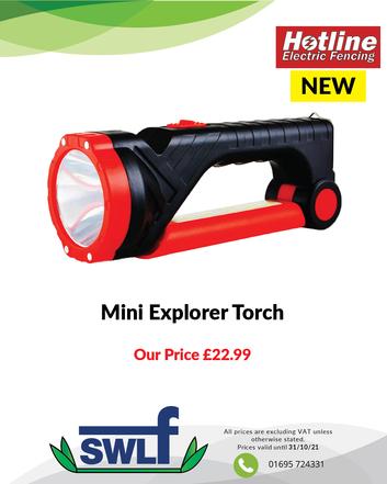Mini Explorer Torch-01.png