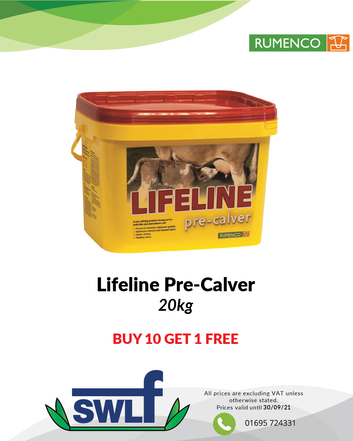Lifeline Pre-Calver-01.png